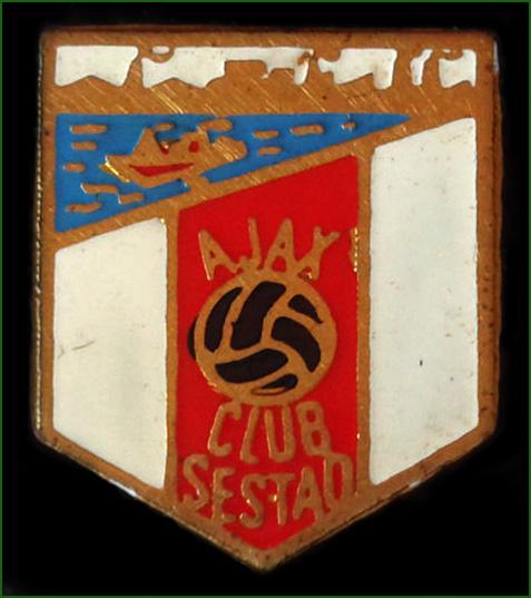 Pin del Ajax